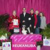 Max Best Of Breed 2014 Eukanuba
